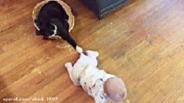 بازی بچه نی نی با گربه