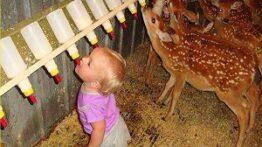 کلیپ خنده دار رابطه بچه کوچولوها با حیوانات