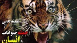 حملات مرگبار حیوانات وحشی به انسان