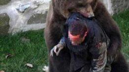 حمله حیوانات وحشی و عجیب به خانه ی انسان