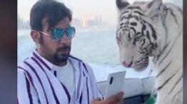 بازار 23 میلیارد دلاری قاچاق و فروش حیوانات وحشی در ایران هم رونق دارد