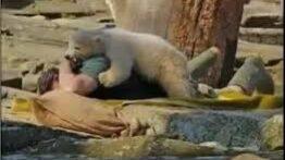 حمله حیوانات به انسان _ جدید
