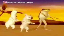 شکار رقص حیوانات مختلف ببینی از خنده پاره میشی